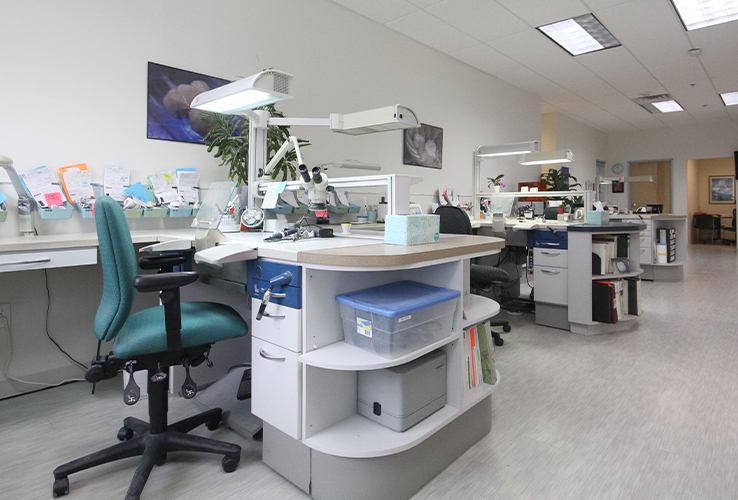 Lab technician desk